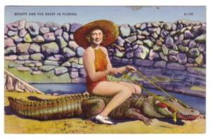 Florida-old_postcard012